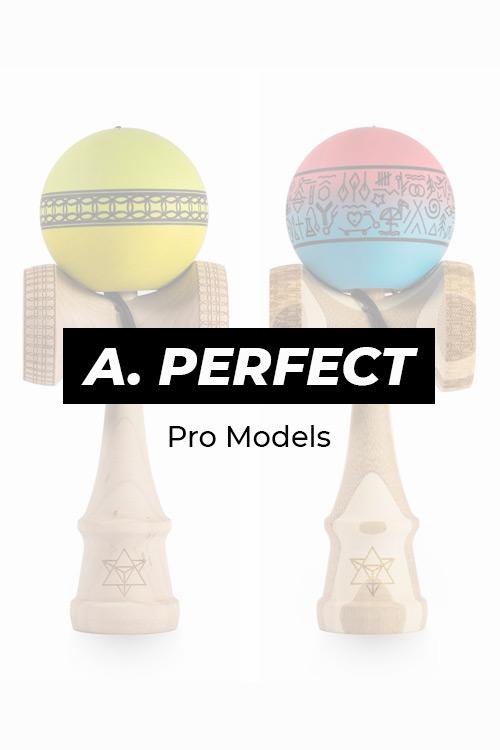 A. PERFECT BIG BROTHER – PRO MODELS
